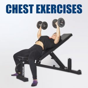 Our Favorite Chest Accessory Exercises | JTSstrength.com
