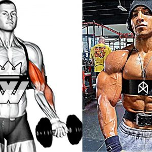 Best Exercises for UPPER BODY WORKOUT (chest, triceps, biceps, back, shoulders)