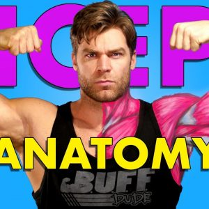 Bicep Anatomy Breakdown & 5 Best Biceps Exercises for BIGGER ARMS