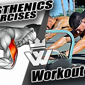 Calisthenics Exercises | Bodyweight Workout Plan