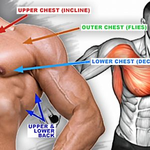 How To Build Your Chest & Back Workout (10 Effective Exercises)