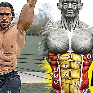 No Gym Full Body Workout (11 Exercise)