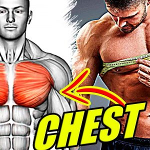 CHEST WORKOUT MASSIVE / 12 Best Exercises for bigger Chest