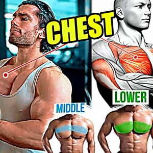 Full Chest Workout Exercises: Upper Chest, Inner Chest, Lower Chest