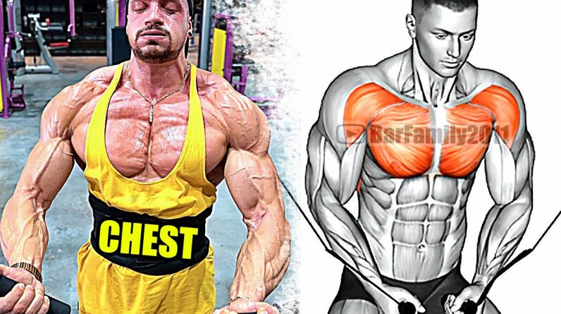 How To Build Your CHEST Fast - Best Chest Exercises!