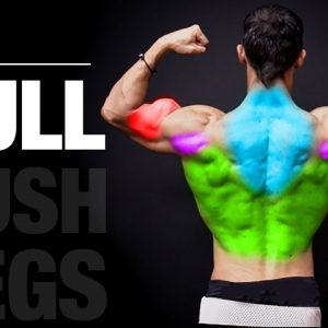 The Perfect Pull Workout (PUSH | PULL | LEGS)