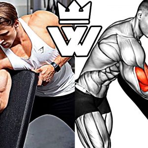 11 Exercises To Build A Big BICEPS!