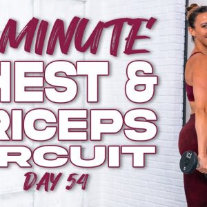 40 Minute Chest & Triceps Push Circuit Workout | Summertime Fine 3.0 - Day 54