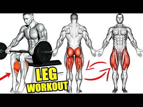How to Build BIG and STRONG LEGS (Calves Hamstrings Quadriceps)