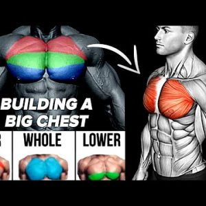 7 Effective Exercises to Build a Full Chest Workout