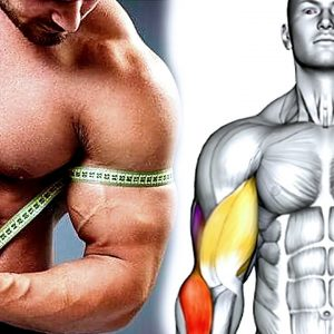 How To Build Your Big Arms (Biceps Triceps Exercises)