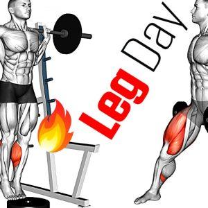 LEG Workout Exercises - Thighs, Calves, Hamstrings, Quadriceps