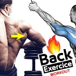 12 Best Exercise Back Workout (Wide and V-Taper Back)