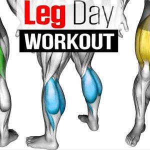 Full LEG Muscle Transformation 8 Best Exercises