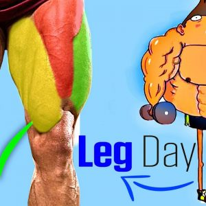 Gym LEG WORKOUT Exercises (Thighs, Glutes, Hamstring, Quadriceps)