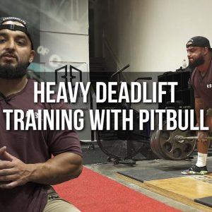 Heavy Deadlift Training with Pitbull