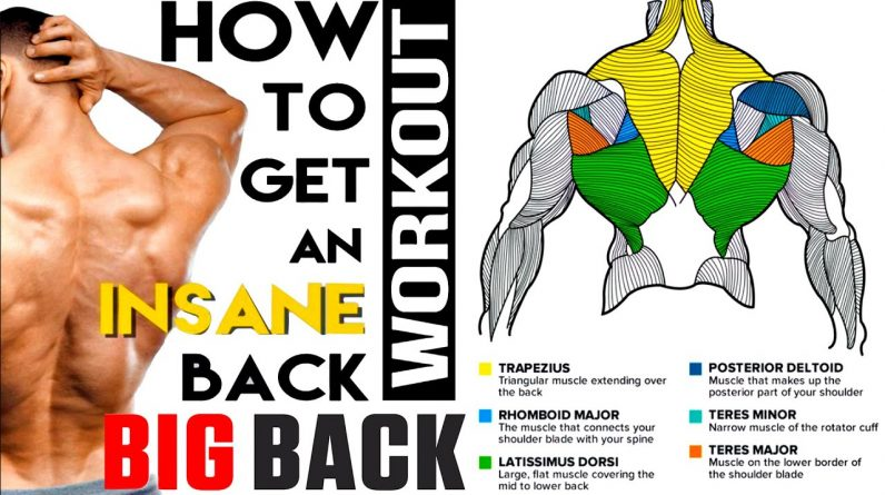 The 10 Best Exercises to Build Your Back NO WEIGHT!
